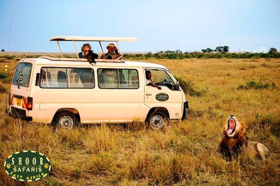 safari vehicle hire kenya