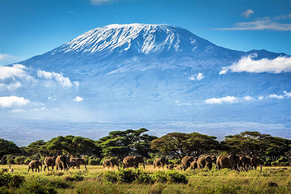 kilimanjaro honeymoon