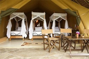 Flamingo Hill Camp, Nakuru - Pictures