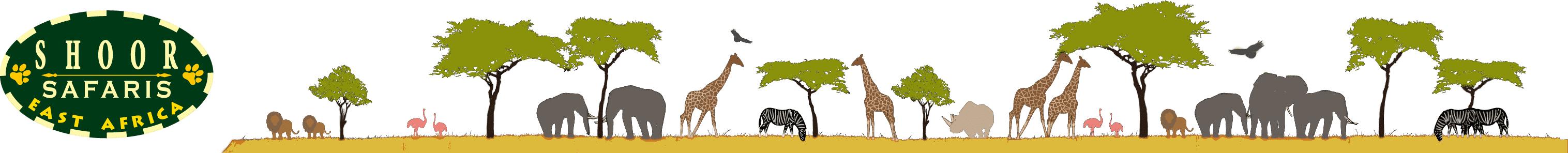 2019 & 2020 Kenya Vacation & Travel Packages   Kenya Safaris