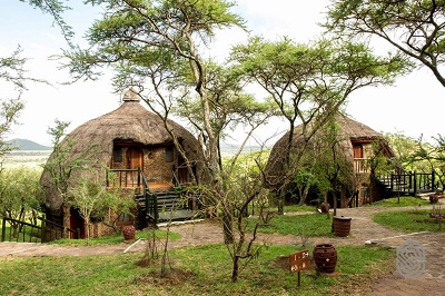 Safari lodges- Serengeti Serena Lodge
